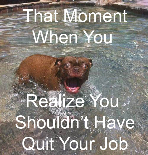 That moment when you realize you should not have quit your day job!